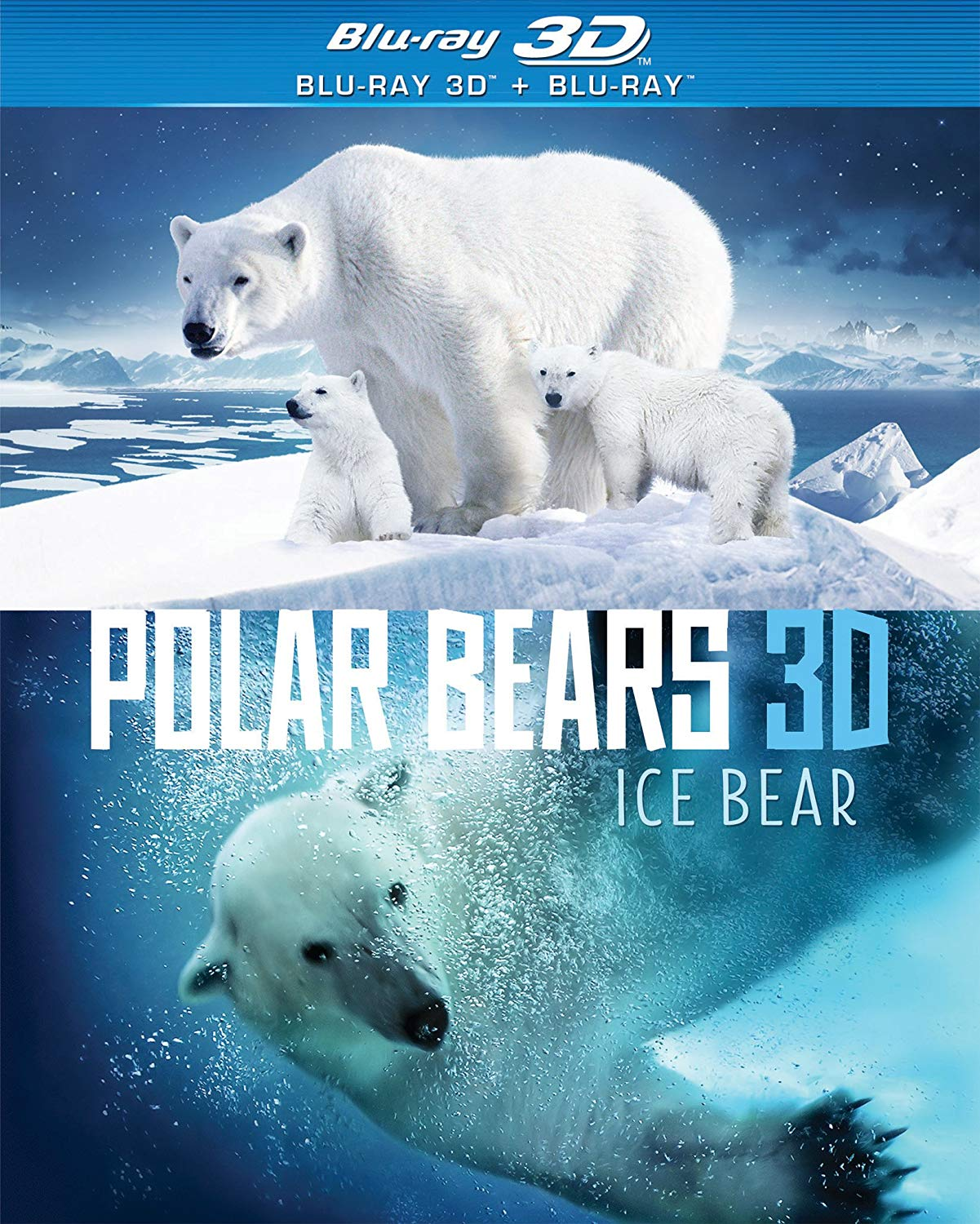 Ice Bear 3D film poster